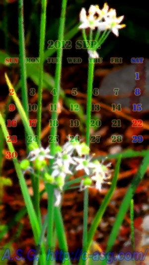 2012年 9月 カレンダー/HD