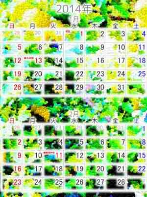 カレンダー: 2014年1~2月